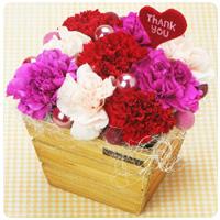 3色のカーネーションが鮮やかな、 母の日のプレゼントにぴったりの フラワーアレンジメント。 お母さんへの溢れる感謝の気持ちを 伝えます。