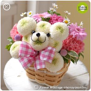 ポンポンクマ・ホワイティ/かわいい誕生日の花【ギフト プレゼント 贈り物 花 フラワー 誕生日 お祝い事 母の日 カーネーション】